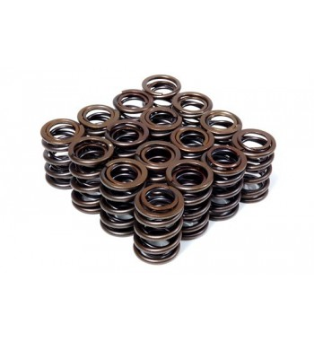 Valve Springs Cat Cams Clio...