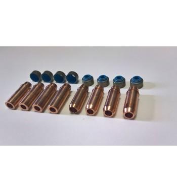 Beryllium copper Valve guides and Viton seals